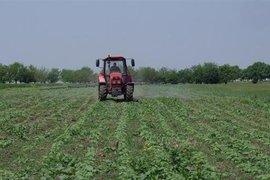Земеделските стопанства в България са увеличили използваната земеделска площ през последните 10 години, достигайки 3.96 млн. ха