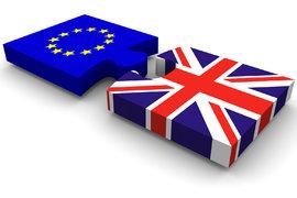 Кои държави ще следят референдума днес?