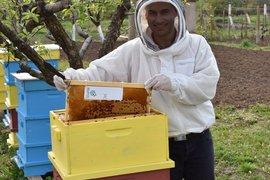 Стартъпът Pollenity с нова платформа Pollenity Honey в подкрепа на родния мед