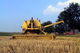 България е един от най-големите вносители на зърно в Испания