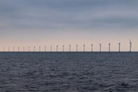 """Какво ще представлява """"Европейският зелен курс"""" на Фон дер Лайен?"""