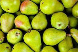 Отпускат се 270 хил. лева за реализация на реколтата от ябълки и круши