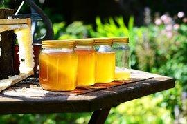 От 26 октомври се отваря приема по пчеларската програма за 2021 г.