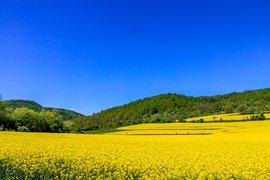 Британското списание A Place in the Sun за България: Време е за нов поглед?