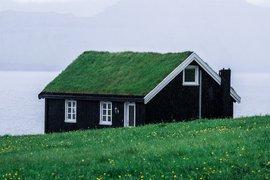 До 11 октомври ще се приемат предложения за зелената архитектура на ОСП 2021-2027 г.