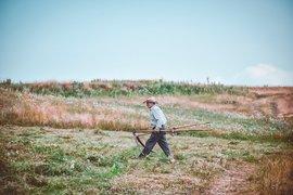 """На 26 октомври стартира отново кампанията на МЗХГ –""""Супер фермер"""""""