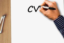 Ето как се подготвя идеалното СВ, според кариерни експерти от Харвард