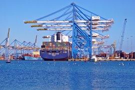 """""""Кофас"""": Очаква се ръст в неплатежоспособността на компаниите в много страни"""
