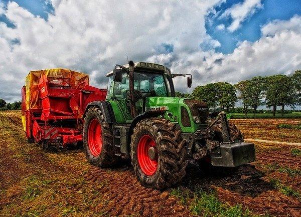 Ръст от 4,1 % на аграрния отрасъл през 2019 г.