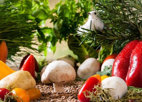 За първи път ще се предоставя обвързана подкрепа за отглеждане на плодове и зеленчуци в планински райони